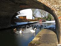 Grand Union Canal Bridge 98